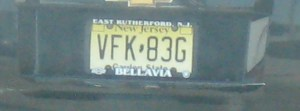 Yup, random pictures of license plates...  I'm an artist, darn it!