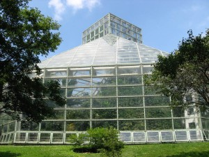 Look - a greenhouse!