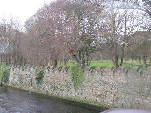 Irish water & Irish trees.