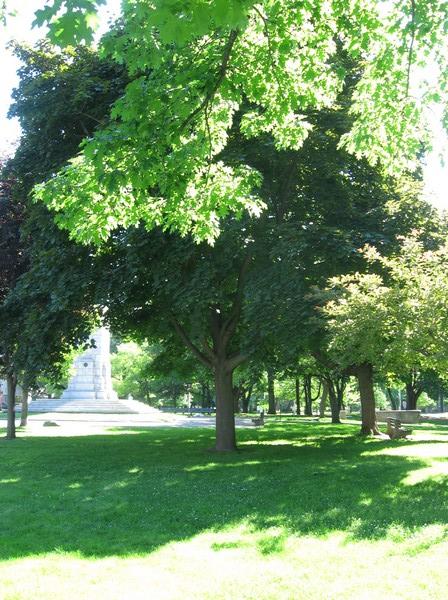In Queen's Park.